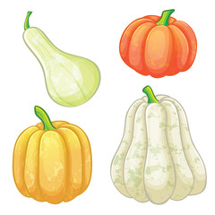 Set of different pumpkins