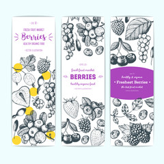 Berries hand drawn, vector illustration banners set. Healthy food design template with berries. Engraved style image
