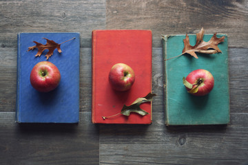 Apples on Vintage Books with Leaves Over Rustic Wooden Background, Knolling Concept, Horizontal