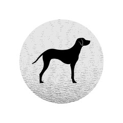 Vector black silhouette of Dalmatian purebred dog by side view