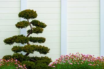 Formhölzer - Gartengestaltung