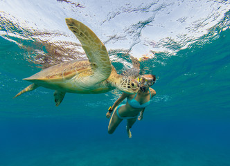 Snorkeling woman with hawksbill turtle, underwater photography.
