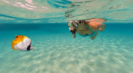 Snorkeling woman exploring beautiful ocean sealife, underwater photography.