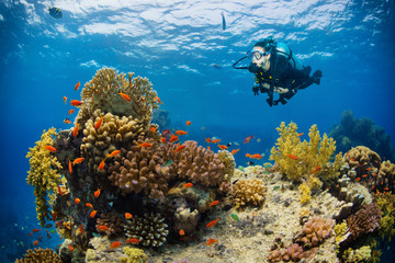 Underwater coral reef with woman scuba diver exploring sea bottom