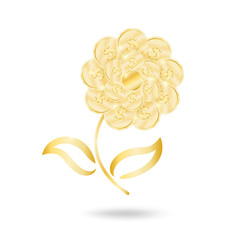 Money flower isolated on white. Vector
