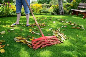 Gartenarbeit - Laub harken
