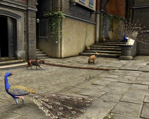 Cats and Peacocks on a Mediterranean Street - illustration