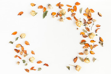 Autumn composition. Frame made of autumn dried flowers and leaves on white background. Flat lay, top view, copy space