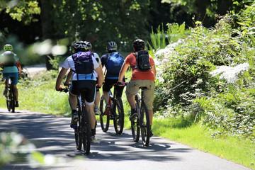 Gruppe von Mountainbikern im Wald