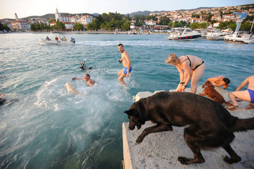 """Dogs and their owners take part in the """"Underdog 2017"""" beach race in Crikvenica"""