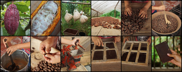 Sequence of 12 photos that teach the process to make homemade chocolate