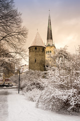 Wall Mural - Fortress wall of Tallinn