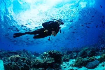 Photo sur Toile Recifs coralliens Scuba diver on coral reef
