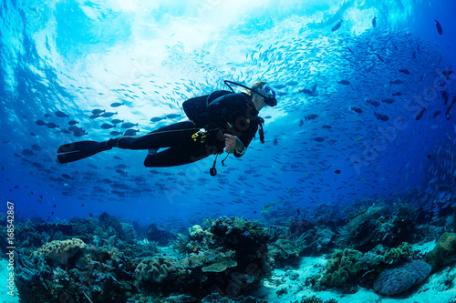 Wall mural Scuba diver on coral reef