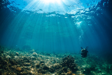 Wall Mural - Sun beams of to reef with Scuba diver