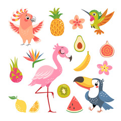 Set of cute cartoon tropical birds and fruit isolated on white background