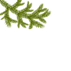 Symbol of the New Year. A green lush branch of spruce. Isolated against white background. illustration