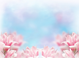 Wall Mural - Spring floral background with magnolia flowers
