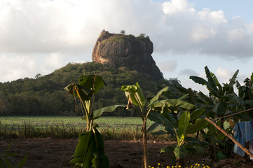 Sigiriya rock and fortress in Sri Lanka