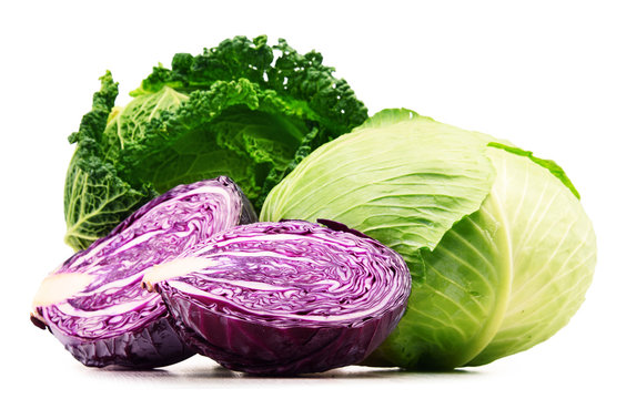 Fresh organic cabbage heads isolated on white