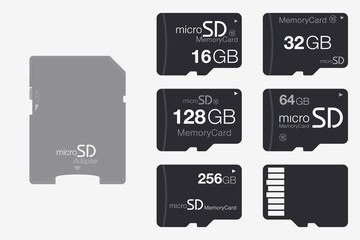 Top View Micro SD to SD Memory Card Adapter. Memory Chip Isolated