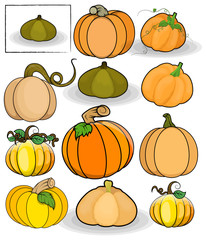 Pumpkins Vector Set