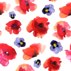 watercolor poppy, hand painted draw
