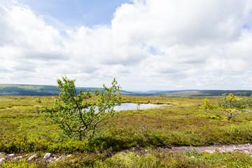 Svenska fjällen om sommaren med fjällsjö och utsikt