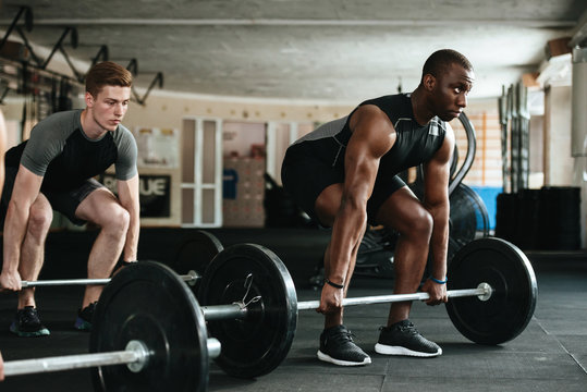 Group of multiracial sports people working out with barbells