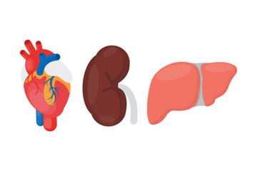 Internal organ donation.