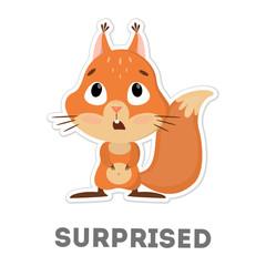 Isolated surprised squirrel.