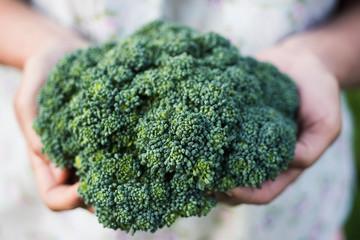 Broccili in woman hands