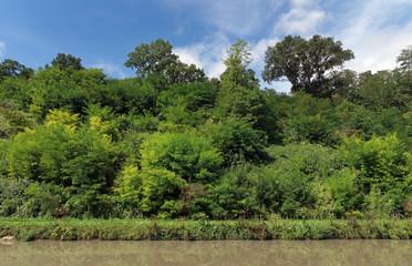 Poster Channel Canal de Briare dans le Loiret