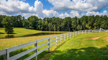 A large tree shades the front area of a white fence. There is a pasture, pond and trees in the...