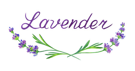 Inscription and sprigs of lavender. Watercolor drawing on a white background with clipping path.