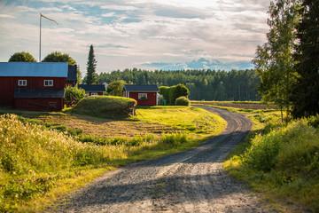 Garden Poster Scandinavia Rural Sweden