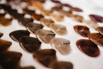Palette hair color.