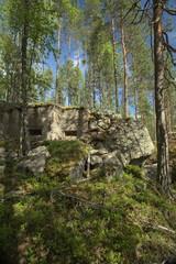 Abandoned World War II bunker in Vaermland, Sweden. It is called Skans 176 Dypen