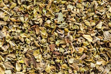 Oregano condiment -  high definition pattern
