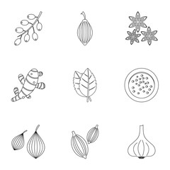 Eco spices icon set, outline style