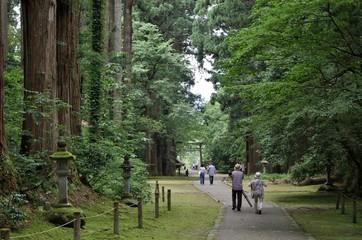 苔が有名な福井県の平泉寺