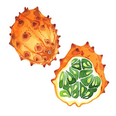 Exotic kiwano healthy food in a watercolor style isolated. Full name of the fruit: kiwano. Aquarelle wild fruit for background, texture, wrapper pattern or menu.