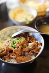 Gyudon , Beef bowl on rice , Japanese food
