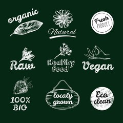 Vector hand drawn logos. Healthy eat logotypes set. Vegan, natural food and drinks signs. Farm market, store icons collection. Raw meal badges, labels. Isolated objects