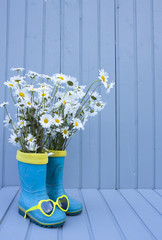 summertime still life with rubber boots and chamomile on wood background