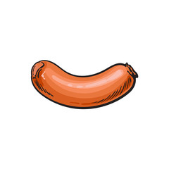 vector sketch sausage. Cartoon isolated illustration on a white background. Sausage and meat types concept