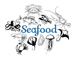 Vector seafood logo. Lobster, crab, Stingray, jellyfish, octopus, sea fish, shrimp, oyster. Isolated on white background. Ocean Delicacies collection