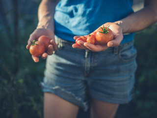 Young woman holding tomatoes from greenhouse