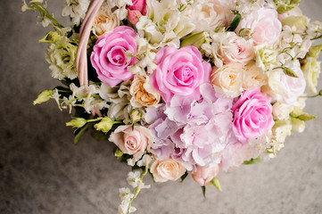 pink and violet fresh roses bunch close up isolated on white