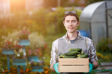 Farmer with box of cucumbers
